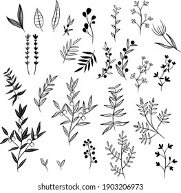 Set of vector black and white plants