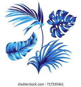set of vector botanical graphic elements. Tropical leaves motifs for graphic, textile, interior design.