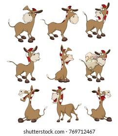 Set of Vector Cartoon Illustration Donkeys for you Design