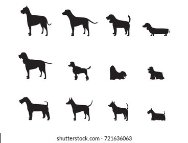 Set of vector dog breeds silhouettes ,Vector illustrations.