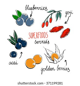 Set of vector doodle illustrations of the most popular super food berries. Blueberries, acai, goji and physalis. Simple hand drawn objects isolated on white background.