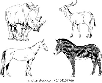 set of vector drawings of different animals, sketches without background