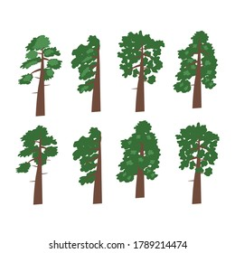 Set of vector drawings of green trees on a white isolated background. Trees, conifers, pines, spruces, flat design, cartoon for decoration of invitations, postcards