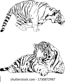 set of vector drawings on the theme of predators tigers are drawn by hand with ink tattoo logos