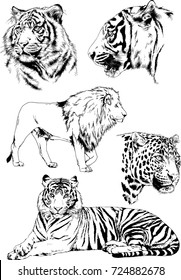 set of vector drawings on the theme of predators tigers and lions are drawn by hand with ink tattoo logos