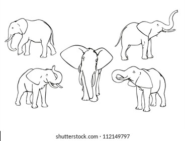 Set of vector elephants, black and white, outline