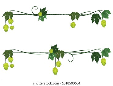 set of vector floral dividers with hops