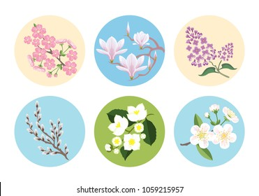 Set of vector flower icons in flat style design bright colors for stickers, labels, emblems. Cherry, sakura, magnolia, apple, verb, jasmine.