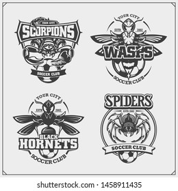 Set of vector football and soccer badges, labels and design elements. Sport club emblems with scorpion, wasp, hornet and spider. Print design for t-shirts.