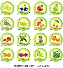 Set of vector fruit icons. Illustration