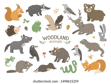 Set of vector hand drawn flat woodland animals. Funny animalistic collection. Cute forest illustration for children's design, print, stationery