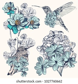 Set of vector hand drawn hummingbirds for design