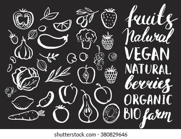 Set of vector handwritten elements. Food farm natural product. Ink brush hand lettering. Hand drawn fruits and vegetables. Chalkboard.