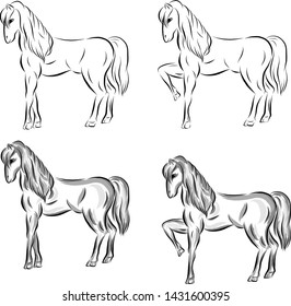 Set of vector horses drawn in black lines and with shadows