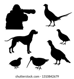 Set of vector hunting silhouettes with English pointer, hunter and game-bird: wild turkey, pheasant, quail, woodcock