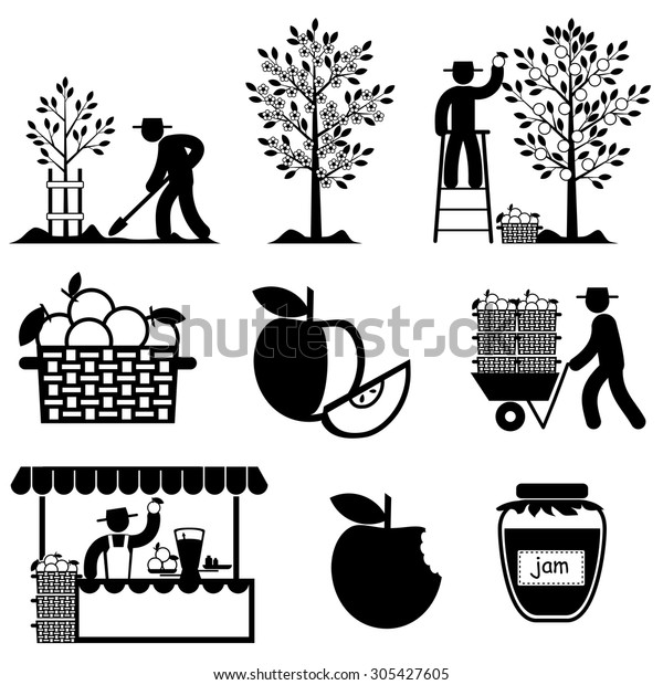 Set Vector Icons Apple Agriculture Processing Stock Vector (Royalty