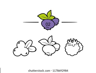 Set of vector icons, sign and symbols with flat elements of berries for modern concepts, web and apps. Collection of infographics logos and pictograms. Northern berries: lingonberries, cloudberries, b