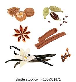 Set vector icons spices. Cardamom, star anise, nutmeg, vanilla flower and sticks, cloves, cinnamon. Vector Illustration.