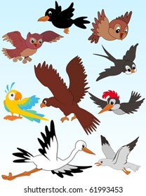 Set of vector illustrated birds - kid style