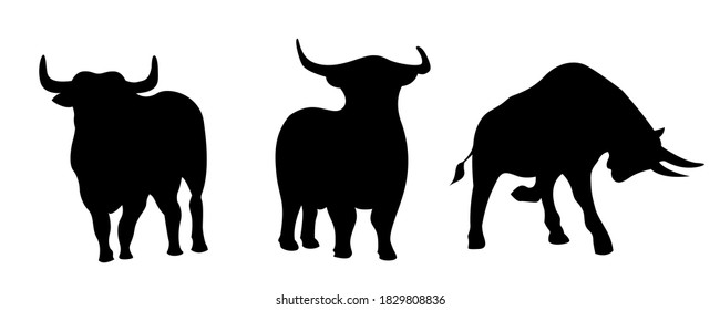 A set of vector illustrations of bulls in different poses. Silhouette of a powerful bull with horns, a bull in an attack pose, a calm pose. Animal as a symbol of 2021. Image of livestock, wild bulls.