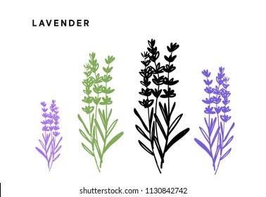 ラベンダー シルエットの画像写真素材ベクター画像 Shutterstock