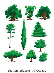 Set of vector illustrations of trees