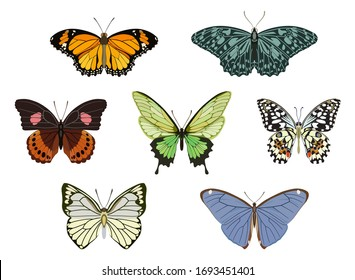 Set of vector images of icons of different-colored butterflies of different types in flat style.