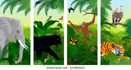 set of vector Jungle rainforest vertical baners with elephant, orangutan, Griffon vulture, tiger, parrot, butterflies and jaguar or leopard black panther
