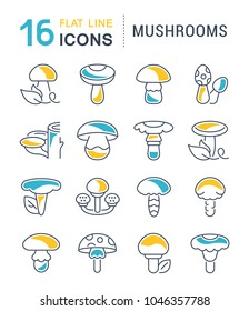Set of vector line icons, sign and symbols with flat elements of mushrooms for modern concepts, web and apps. Collection of infographics logos and pictograms.
