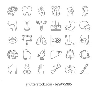 Set vector line icons, sign and symbols in flat design of anatomy and physiology with elements for mobile concepts and web apps. Collection modern infographic logo and pictogram.