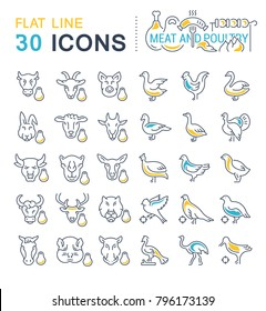Set of vector line icons, sign and symbols with flat elements of meat and poultry for modern concepts, web and apps. Collection of infographics logos and pictograms.