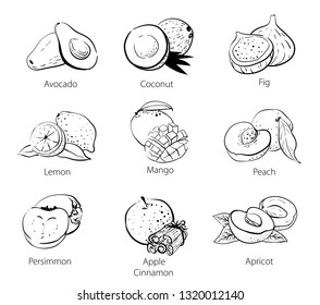 Set of vector linear black and white doodles of food sketches: persimmon, coconut, avocado, mango, peach, apricot, dried apricots, cinnamon, figs, lemon. Isolated hand drawn ink sketch on white.