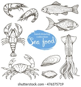 Set of vector linear sketches of various seafood isolated on a white background. Figures handmade: fish, lobster, shrimp, squid, crab.