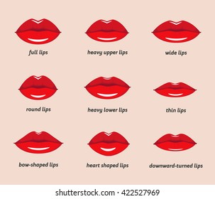 Set of vector lips shapes. Set of illustrations with captions. Various types of  woman lips.