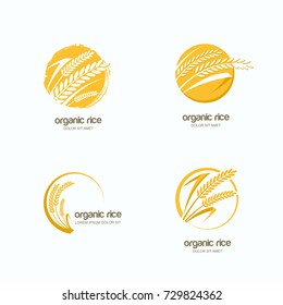 Set of vector logo, label or package circle emblem with yellow rice, wheat, rye grains. Hand drawn design template for asian agriculture, organic cereal products, bread and bakery.