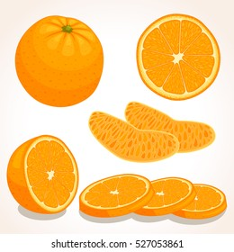 Set of vector orange. Whole, sliced, half of a orange fruit isolated on white background. Vector illustration.