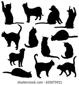 cat outlines images stock photos  vectors  shutterstock