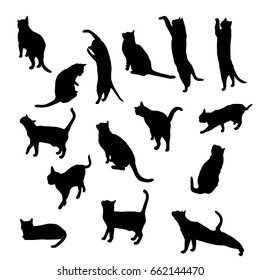 Set vector silhouette of the cat, different poses, sits and lies,  black color, isolated on white background