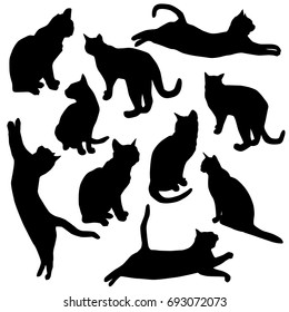 Set vector silhouette of the cat, different poses, black color, isolated on white background