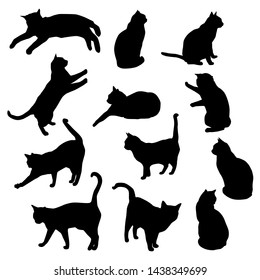 Set vector silhouettes of the cat, different poses, standing, jumping and sitting,  black color, isolated on white background