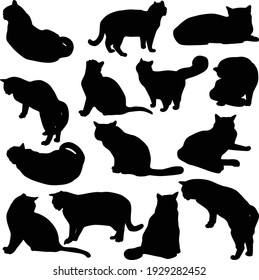 Set of vector silhouettes of cats in different poses. Black icons of cats isolated on white