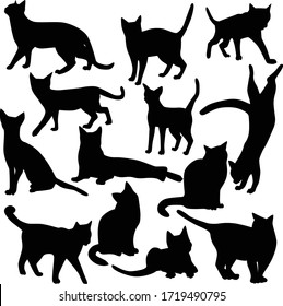 Set of vector silhouettes of cats in various poses isolated on a white background. Collection of black icons of domestic cats