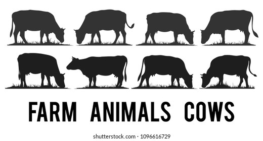 Set of vector silhouettes of farm animals cows isolated on white.