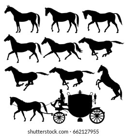 Set of vector silhouettes of horses. Standing, walking, trotting, galloping, rearing horses.