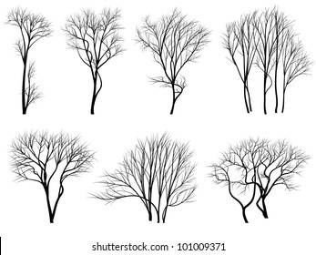 Set of vector silhouettes of trees without leaves during the winter or spring period.