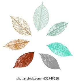 A set of vector skeleton leaves in teal blue and rusty brown, arranged as a frame on a white background. A collection of decorative design elements or a frame with copy space