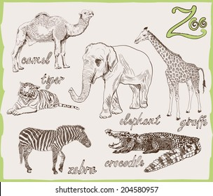 exotic animal