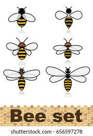 Set of vector stylized bees. Collection of logos with a honey bee. Icons with insects.