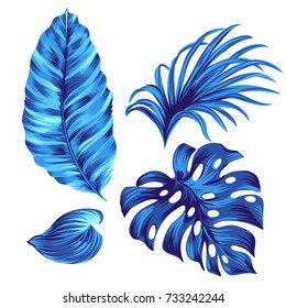Set of vector tropical leaves.