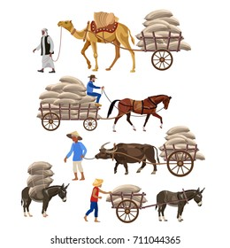 Set of vector vehicles with draft animals: camel, horse, water buffalo, and donkey. Vector illustration